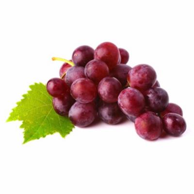 agrobras-uva-red-globe