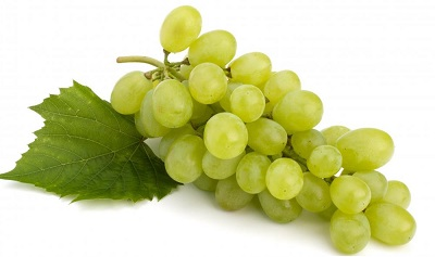 bundle-of-green-grapes_new