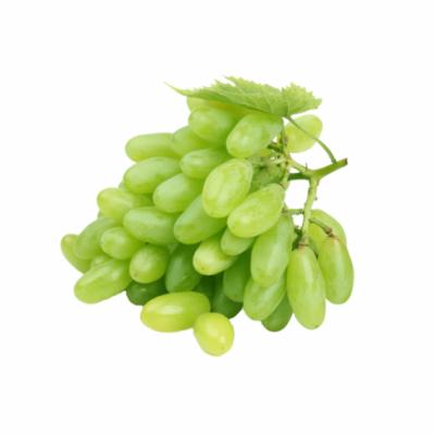 agrobras-uva-sugar-crisp
