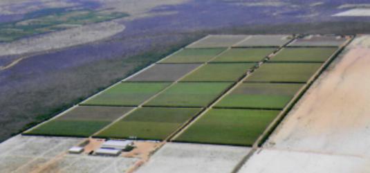 hidrotec 2 - fazenda